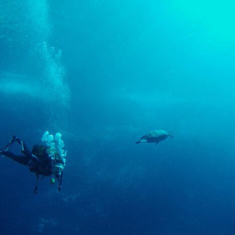 Top des choses à faire à Grande-Terre en Guadeloupe