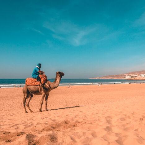 Top des choses à faire à Marrakech