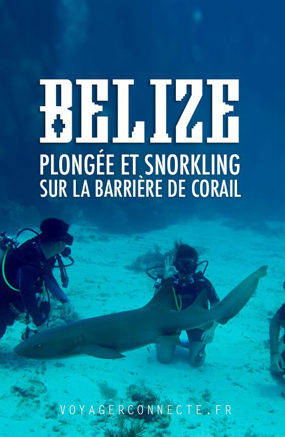 Plongée sous-marine et snorkeling au Belize : un des meilleurs spots du monde
