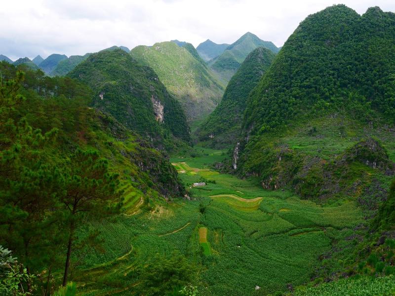 La montagne de la région d'Ha Giang