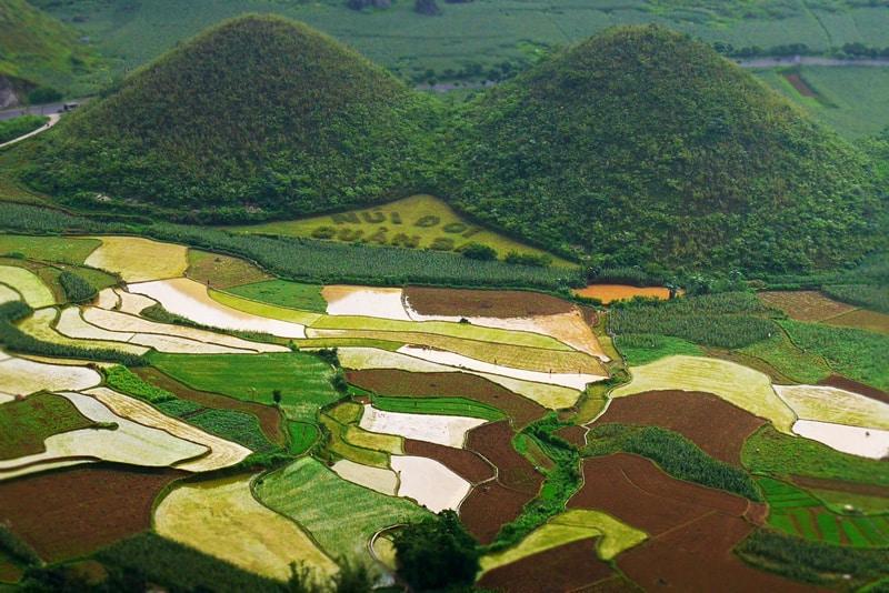 Paysage en terrasses de Dong Van au Vietnam