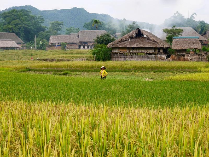 Chez l'habitant nord vietnam
