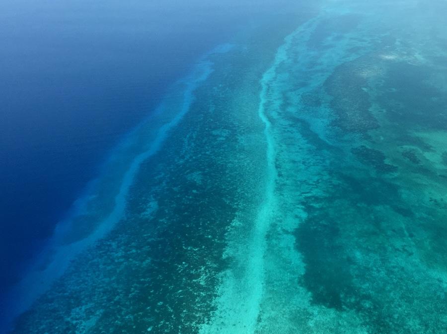 Barrière de corail Belize