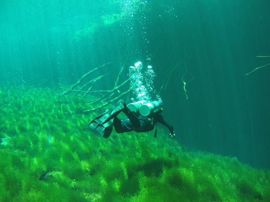 Plongée cenote Carwash Tulum